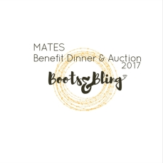 boots-and-bling-logo